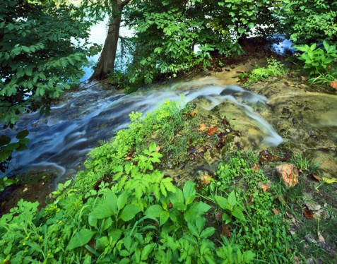 Little Arkansas Spring flowing into the Blanco River Photo by Charles Kruvand