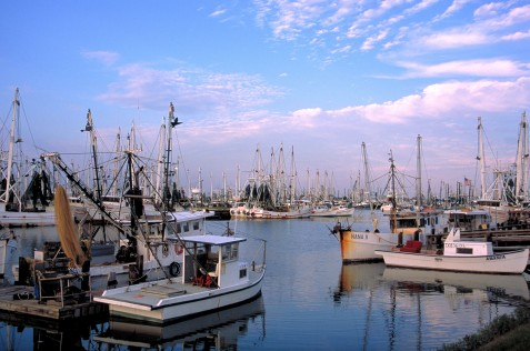 Shrimp Boats on the Texas Coast Photo Courtesy of TPWD, 2004