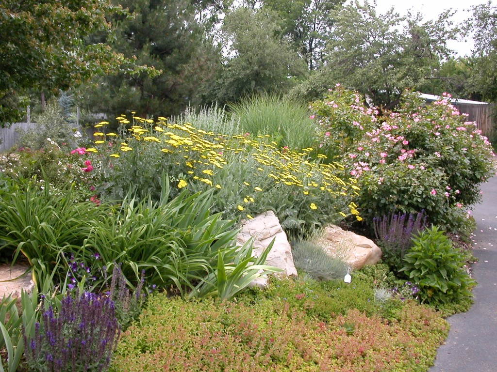 Case study water conservation in san antonio texas for Landscaping rocks midland tx