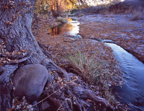 Ash Creek at Woodward Ranch, South of Alpine Photo courtesy of Charles Kruvand