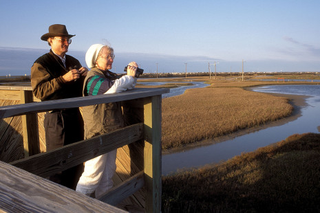 Birding on the Texas Coast Photo courtesy of TPWD