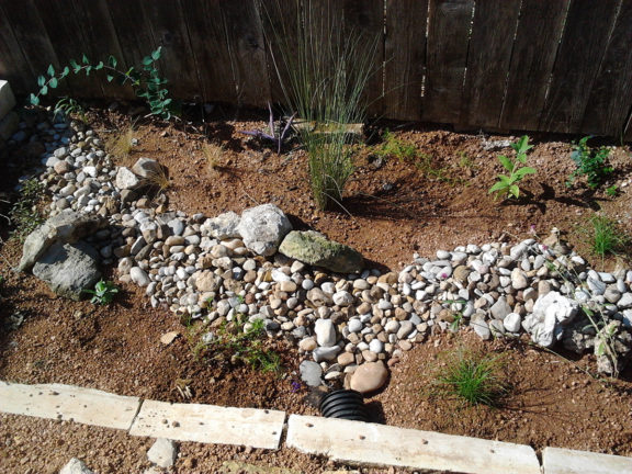 Rain gardens come in many different sizes and shapes, and can be customized to fit your garden style.