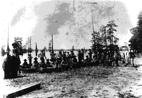 """Between 1909 and 1911 at Caddo Lake there was a """"great pearl rush,"""" as people flocked to harvest pearls from freshwater Texas mussels."""