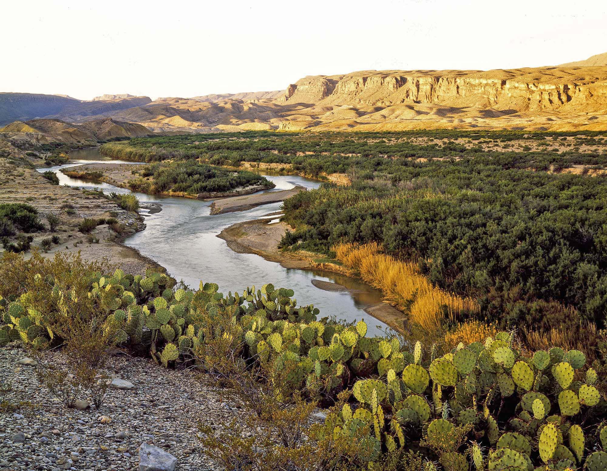 2020 Texas Water Conservation Scorecard